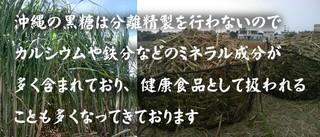 kokutou2h.jpg